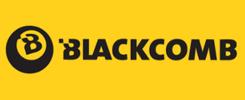 logo Blackcomb.cz